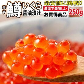 鱒いくら 醤油漬け 250g【イクラ 海鮮丼 いくら】