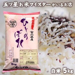 米 富山県産 お米 精米 5kg ヒトメボレ 白米 5キロ 分づき米 令和元年富山県産ひとめぼれ5kg コロナ 応援 食品