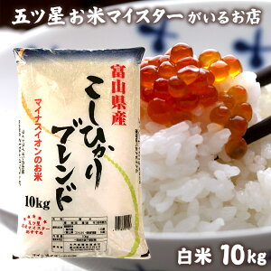 米 富山県産 ブレンド米 精米 10kg お米 白米 10キロ 令和元年富山県産こしひかりブレンド10kg コロナ 応援 食品