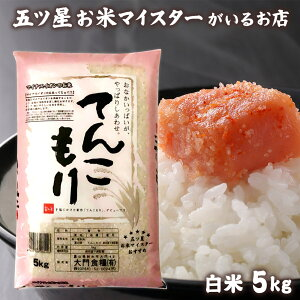 米 富山県産 精米 5kg お米 白米 5キロ 分づき米 令和元年富山県産てんこもり5kg コロナ 応援 食品