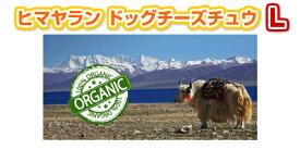 【メール便無料】ネパールより直輸入 ヒマラヤン ドッグチーズチュウ Lサイズ