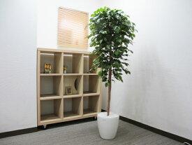 送料無料 観葉植物 インテリア 造花 光触媒 人工観葉植物 人工樹木 オフィス用 光触媒加工済み ベンジャミン H1700mm