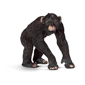 シュライヒ・チンパンジー