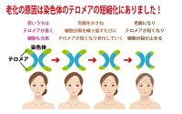 (テロメア・肌寿命・細胞から若返り・カッパフィカスアルバレジエキス・カルノシン・水溶性プロテオグリカン)白姫レディーレ46