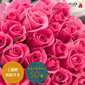 ◆色がえらべる◆バラ50本の花束 送料無料  薔薇 ブーケ 記念日 誕生日 結婚記念 お祝い 入学 入園 還暦 癒し 赤 ピンク 黄色 ギフト プレゼント 切花 遅れてゴメンね母の日
