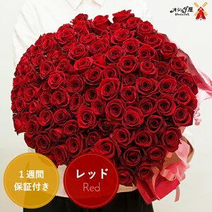 【12月〜3月のお届け専用】赤バラ 花束 25本以上で送料無料お好きな本数で
