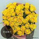イエロー バラ 花束 父の日 黄色いバラ プレゼント お好きな本数で