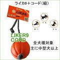 LIKER9CORDで楽しく遊ぼう!!