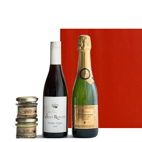 グルメギフト ワインとおつまみセット フランス ボルドー 赤ワイン スパークリング ハーフボトル コート・デュ・ローヌ 375ml×2本 コルシカ島のオーガニックパテ 45g×2個 イノシシのテリーヌ オリーブとハーブ風味の豚肉テリーヌ ギフト箱入り
