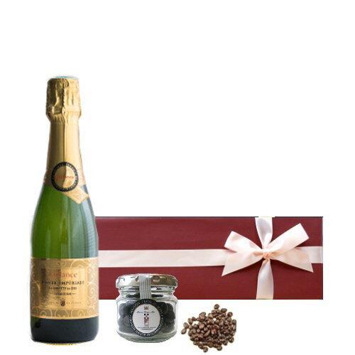 ワインとスイーツ ギフト スパークリング 貴腐ワイン漬け レーズンチョコレート フランス コート・デュ・ローヌ ジャイアンス 泡 スパークリングワイン やや甘口 ハーフボトル 375ml 包装つき 誕生日プレゼント お菓子 チョコ
