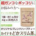 『カイテキどかスリム茶』30包入り(約1ヵ月分)