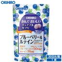 【アウトレット】 オリヒロ かんでおいしいチュアブルサプリ ブルーベリー&ルテイン 120粒 30日分 orihiro