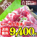 Tokushimo500 sm