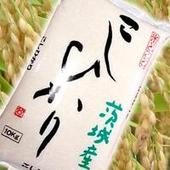 お試し 新米29年産 茨城県奥久慈産 コシヒカリ 【3合パック】450g
