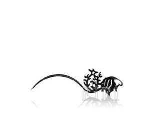 【あす楽】アートペーパーラッシュ,つけまつげ,プロ用,紙のつけまつ毛,新感覚のアイラッシュ エンゼルフィッシュ JZ-1007【RCP】