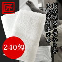 Kikumo240
