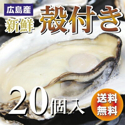 広島産殻付き牡蠣(かき)20個入り【送料無料】加熱用