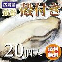広島産 殻付き牡蠣(かき)20個入り【送料無料】加熱用