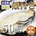 【送料無料】生産直送 新鮮広島産生かき 殻付き牡蠣【50個入り】【smtb-kd】