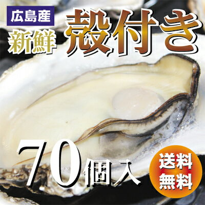 【送料無料】新鮮広島産生かき殻付き牡蠣【70個入り】【smtb-kd】