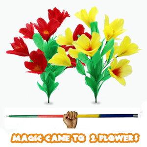 Magic Cane to 2 Flowers ケーン to 2フラワー イリュージョン,大阪マジック,マジック,手品,販売,ショップ,マジシャン,大阪,osaka,magic