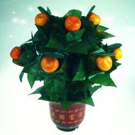 The Orange Tree Illusion (10 Oranges) オレンジツリーイリュージョン|イリュージョン,大阪マジック,マジック,手品,販売,ショップ,マジシャン,大阪,osaka,magic