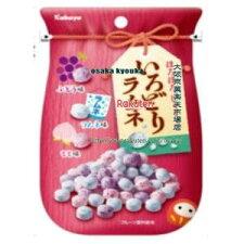 【メール便送料無料】大阪京菓ZR2019年2月5日《火曜日》発売