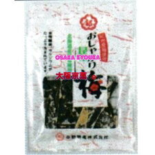 中野物産11Gおしゃぶり昆布梅(11G)×10個