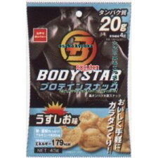 おやつカンパニーBODYSTARプロテインスナックうすしお味(43G)×24個