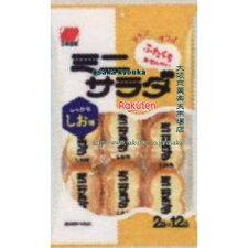 三幸製菓2枚X12袋ミニサラダしお味(2枚X12袋)×16個