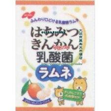 ノーベル製菓70Gはちみつきんかん乳酸菌ラムネ(70G)×48袋