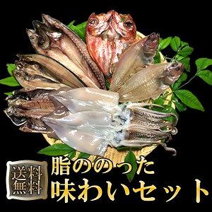 脂ののった 味わいセット 敬老の日 御歳暮 ギフト プレゼント 干物 詰め合わせ 一夜干し 金目鯛 アジ カレイ ホッケ サバ いか 送料無料