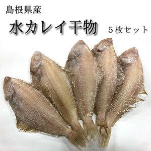 水カレイ 5枚セット 一夜干し 島根県産 干物 かれい おかず