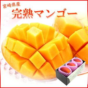 完熟マンゴー 青秀 2L3玉 350g以上 宮崎県産 母の日 ギフト 送料無料
