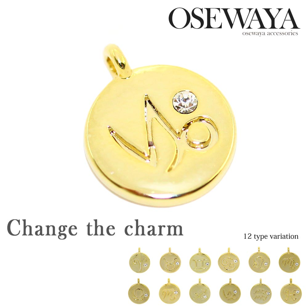【Change the charm】 ネックレス用チャーム ニッケルフリー 金属アレルギー アクセサリー パーツ 星座[お世話や][osewaya]