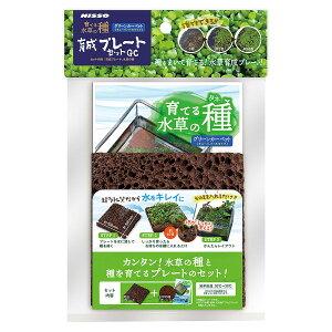 マルカン 育てる水草の種 育成プレートセットGC【happiest】【60サイズ】【SBT】(6041661)