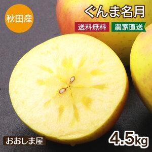 りんご ぐんま名月 送料無料 4.5kg(14玉-18玉) 蜜入り ご家庭用 <出荷時期:11月上旬から中旬> 果物 フルーツ 大嶌屋(おおしまや)