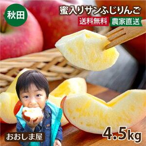 秋田 りんご 蜜入りサンふじりんご 送料無料 4.5kg 大小混合(約12玉-18玉前後)<11月下旬より順次出荷>フルーツ グルメ 果物 大嶌屋(おおしまや)