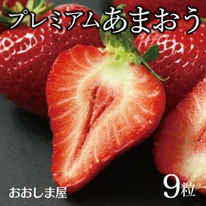 福岡県産 プレミアム あまおう 1パック 9粒 いちご イチゴ 苺 農家直送 送料無料 <4月上旬より出荷> フルーツ 果物 大嶌屋(おおしまや)【gift】