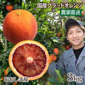 ブラッドオレンジ 3kg 送料無料 国産 モロ種 熊本 みかん オレンジ 希少 アントシアニン <2月下旬より出荷予定> 果物 フルーツ 大嶌屋(おおしまや)