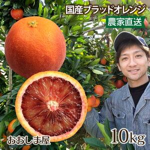 ブラッドオレンジ 10kg 送料無料 国産 モロ種 熊本 みかん オレンジ 希少 アントシアニン <2月下旬より出荷予定> 果物 フルーツ 大嶌屋(おおしまや)