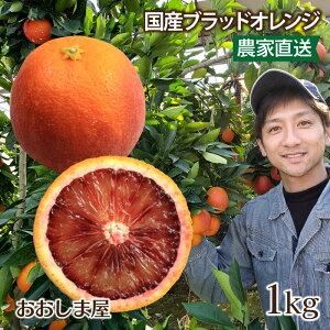 ブラッドオレンジ 1kg 送料無料 国産 モロ種 熊本 みかん オレンジ 希少 アントシアニン <2月下旬より出荷予定> 果物 フルーツ 大嶌屋(おおしまや)