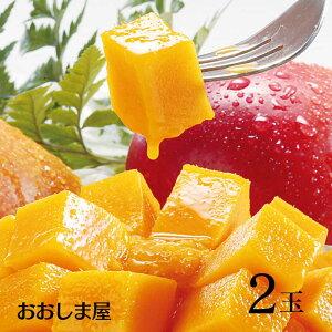 \ポイント2倍/高糖度 マンゴー 2玉 送料無料 国産 西表島 江袋農園 高糖度 糖度15度以上 アップルマンゴー フルーツ 果物 大嶌屋(おおしまや)
