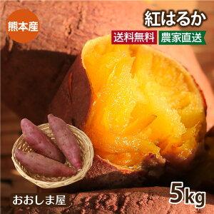 さつまいも 紅はるか 5kg 送料無料 サツマイモ べにはるか 生芋 さつま芋 唐芋 からいも 土付き 泥付き 野菜 旬 料理 レシピ 国産 熊本 大嶌屋(おおしまや)【gift】