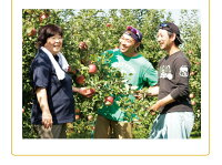 健康ギフト国産フルーツ盛り合わせ