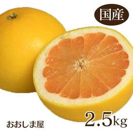 国産 グレープフルーツ 2.5kg 送料無料 熊本産 さがんルビー 【現在出荷中】 ノーワックス ジュース スムージー フルーツ 果物 大嶌屋(おおしまや)