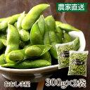 お中元 野菜 だだちゃ豆 枝豆 600g(300g×2袋)<予約受付:8月中旬より出荷> ギフト 産地直送 農家直送 国産 果物 …