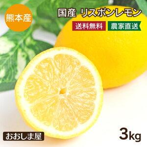 国産 レモン 熊本産 3kg 送料無料 リスボン れもん ノーワックス 防カビ剤不使用 産地直送 果物 フルーツ 大嶌屋(おおしまや)