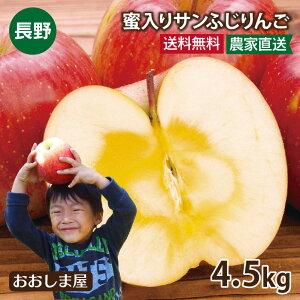 長野県産 蜜入りサンふじりんご 4.5kg 大小さまざま(約14-18玉前後)<1月上旬より順次出荷>グルメ フルーツ 果物 送料無料 産地直送 大嶌屋(おおしまや)