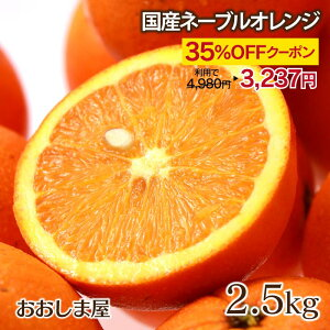 \最大46%OFFクーポン/ネーブル 2.5kg 13玉前後 ネーブルオレンジ 網田ネーブル 熊本県産 農家直送 送料無料 フルーツ 果物 大嶌屋(おおしまや)